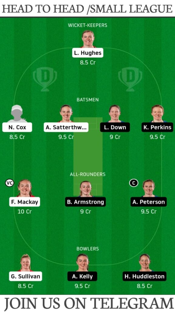 CM-W vs AH-W, Canterbury Magicians vs Auckland Hearts Dream11 Prediction, Fantasy Cricket Tips, Playing XI, Pitch Report and Players Record | Match 14, Dream11 Women's Super Smash T20 2020-21
