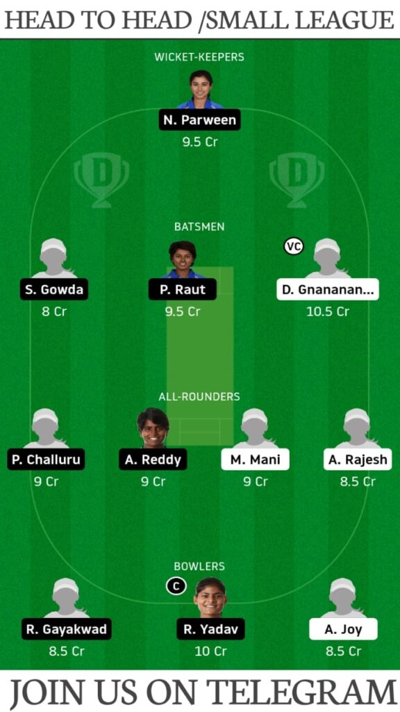 HRN-W vs KNI-W, Heron Sports vs Kini RR Sports Dream11 Prediction, Fantasy Cricket Tips, Playing XI, Pitch Report & Players Record | Final, T20 India Nippon Cup January 12, 2021